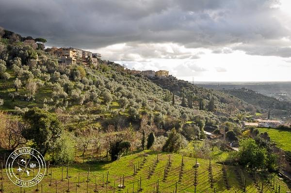 Villa d'Este em Tivoli - Um passeio que vale à pena! - EmRoma.com